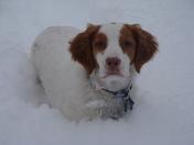 Snow Day 1-8-10 (2).JPG