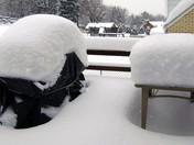 snow jan 2010.jpg