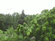 Wind before storm in Irwin