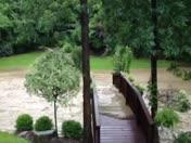 Flood video