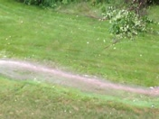 Water in our back yard
