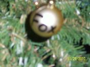 Steelers- Fox bulb