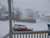 snow 2-11-2012 001.JPG