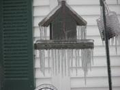 ice storm of dec 2008 079.jpg
