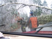Good to have a chainsaw in your back seat!.JPG
