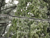 Ice Storm; Amherst, NH