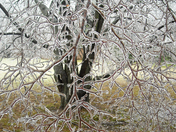 Exeter Ice Storm 1