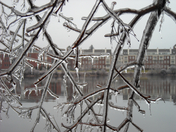 Exeter Ice Storm 10
