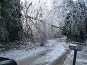 Ice Storm 2008 Damage Peterborough NH