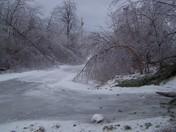 ice storm - Bridgewater, NH