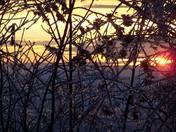 ice storm sunset - Bridgewater, NH