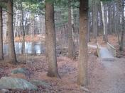 Livingston Park
