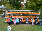 Cute little Pumpkins!