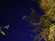 ISS fly by Rochester NH 5 -12-2009 9-17PM-2 Dennis M Madden .jpg