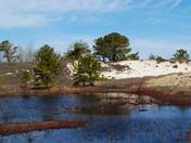 dunes at cranes beach