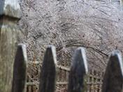 Fridged Fence