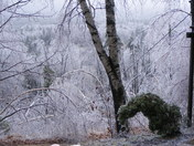 Ice Storm, Temple