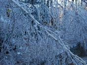 Ice Storm 12 2008