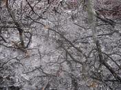 Winter-51.jpg