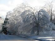 S NH Ice Storm
