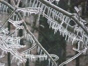 Icicles, icicles, icicles