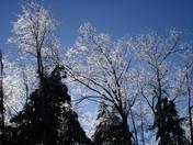 Snow and Ice 028.jpg