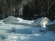 Greenhouse 12-22-08