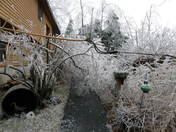 12/11 Ice Storm 12/12 Derry, NH