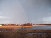 Back yard Rainbow