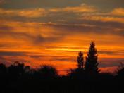 Modesto Sunset