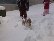Snow day 3/2/09