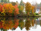Pond Color