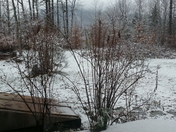 first snow fall!