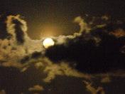 FULL MOON PICS 6-7-09 040.jpg