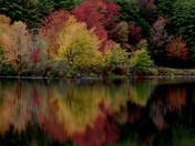 Graet Reflections