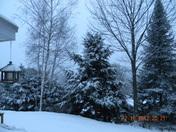 Snowy Monday