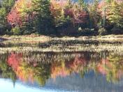 Lily Pond, White Mountain Valley