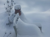 01-21-11 More snow (17).JPG