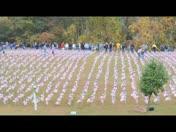 7800 Flags in Plaistow Field