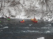 New Years Day Kayaking, Franklin