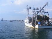 hampton harbor boats