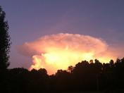 Odd Mushroom Cloud