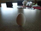Egg on end