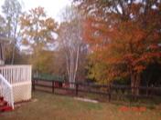fall and holloween 022.jpg