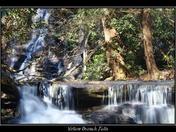 Yellow Branch Falls