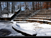 Winter at Clemson's Botanical Garden