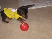 Goatee playing ball