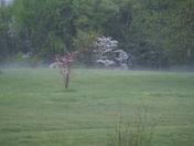 Hail Storm 31-Mar-2012 013.JPG