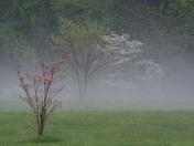 Hail Storm 31-Mar-2012 015.JPG