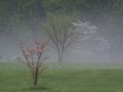 Hail Storm 31-Mar-2012 018.JPG